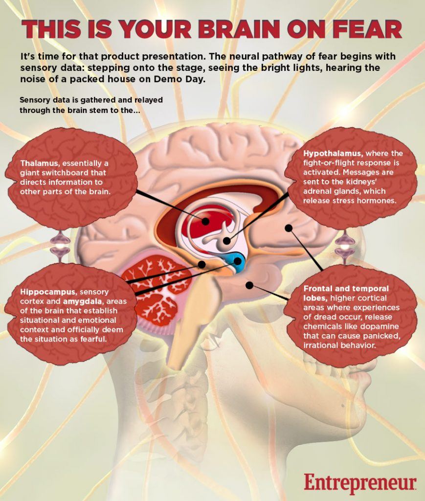 brain-on-fear-infographic2