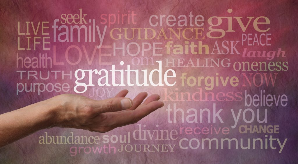 Cultivating an Attitude of Gratitude Fire Power Seminars